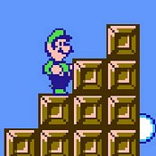 Luigi The Forgotten Adventure