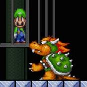 Super Mario Saves Luigi